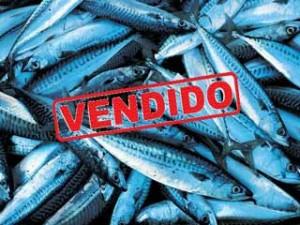 pescado-vendido-iberica-languages